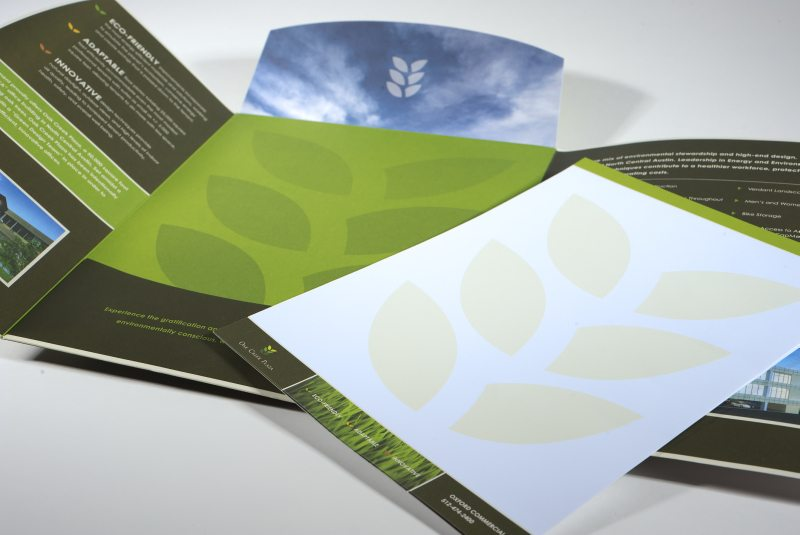 Pocket Folder and Brochure Design